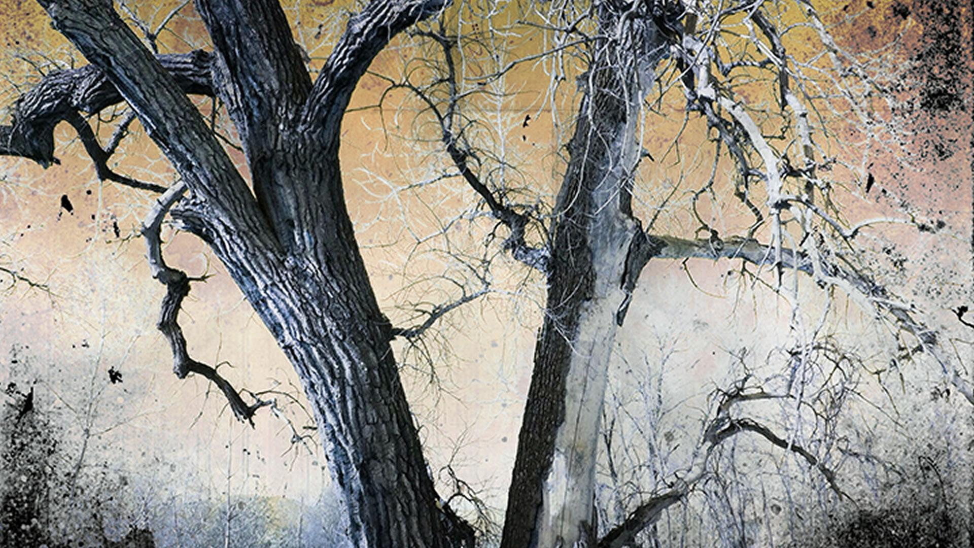 Kate-Zari-Roberts-Tree-of-Knowledge